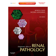 Diagnostic Atlas of Renal Pathology (BOK)