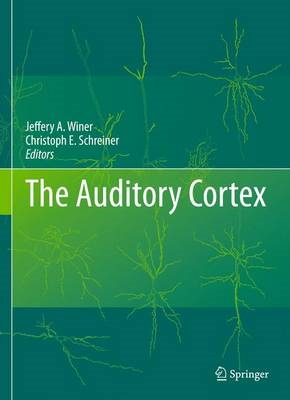 The Auditory Cortex (BOK)