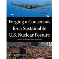 Forging a Consensus for a Sustainable U.S. Nuclear Posture (BOK)