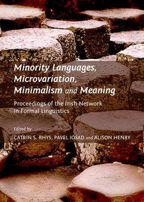 Minority Languages, Microvariation, Minimalism and Meaning: Proceedings of the Irish Network in Form (BOK)
