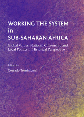 Working the System in Sub-Saharan Africa: Global Values, National Citizenship and Local Politics in (BOK)
