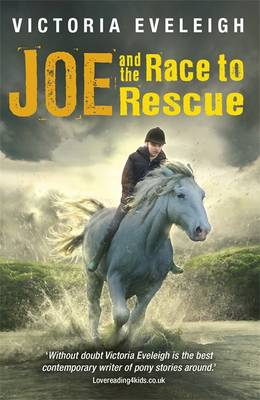 Joe and the Race to Rescue (BOK)