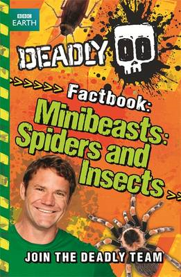 Minibeasts, Spiders and Insects (BOK)