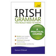 Irish Grammar You Really Need to Know: Teach Yourself (BOK)