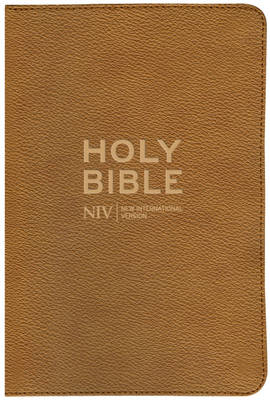 NIV Traveller's Soft-Tone Bible (BOK)