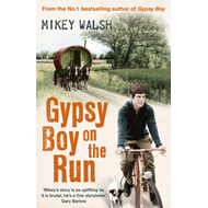 Gypsy Boy on the Run (BOK)