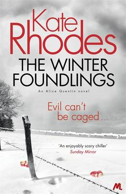 Winter Foundlings (BOK)