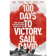 100 Days to Victory: How the Great War Was Fought and Won 19 (BOK)