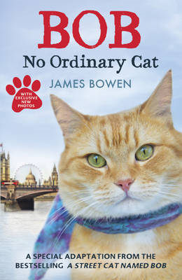 Bob: No Ordinary Cat (BOK)