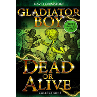 Gladiator Boy: Collection 3 (BOK)