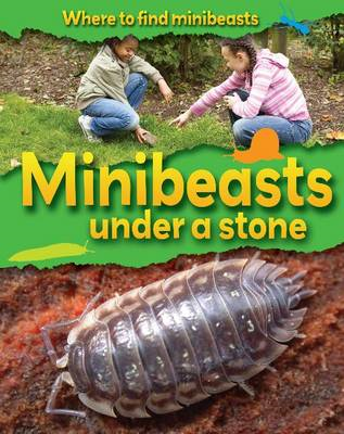 Minibeasts Under a Stone (BOK)