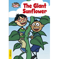 Giant Sunflower (BOK)