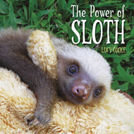 Power of Sloth (BOK)
