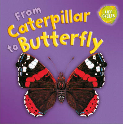 From Caterpillar to Butterfly (BOK)