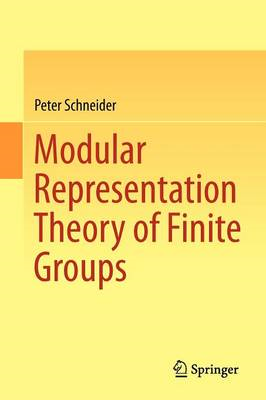 Modular Representation Theory of Finite Groups (BOK)