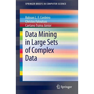 Data Mining in Large Sets of Complex Data (BOK)