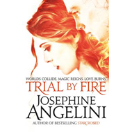 Trial by Fire (BOK)