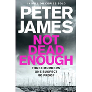 Produktbilde for Not Dead Enough (BOK)