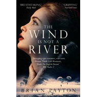 The wind is not a river (BOK)