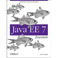 Java EE 7 Essentials (BOK)