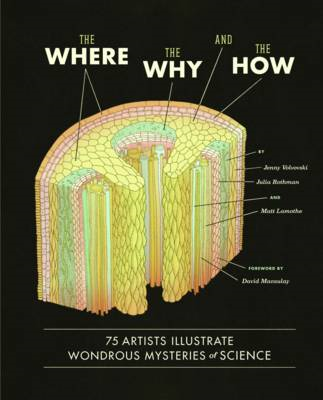 Where, the Why, and the How : 75 Artists Illustrate Wondrous (BOK)