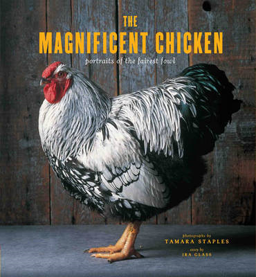 The Magnificent Chicken: Portraits of the Fairest Fowl (BOK)
