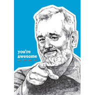 You're Awesome Journal (BOK)