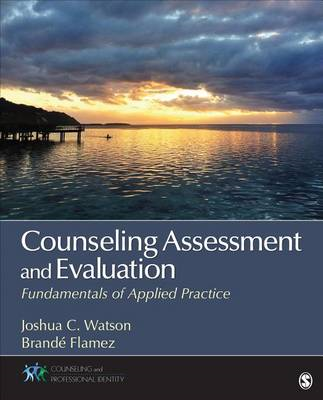 Counseling Assessment and Evaluation (BOK)