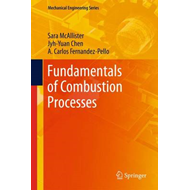 Fundamentals of Combustion Processes (BOK)