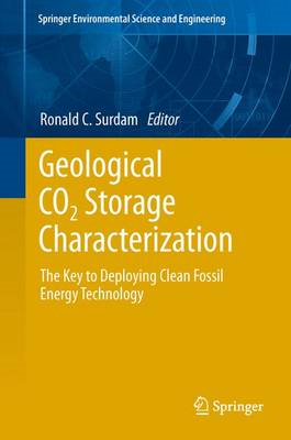 Geological CO2 Storage Characterization (BOK)