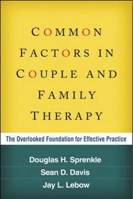 Common Factors in Couple and Family Therapy (BOK)