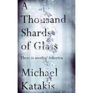 Thousand Shards of Glass (BOK)