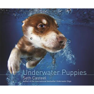 Underwater Puppies (BOK)