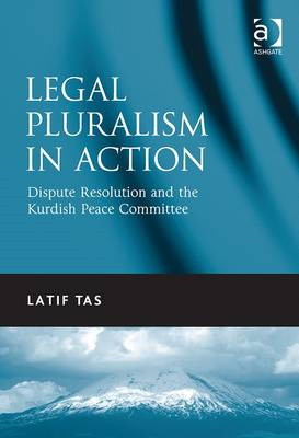 Legal Pluralism in Action: Dispute Resolution and the Kurdish Peace Committee (BOK)