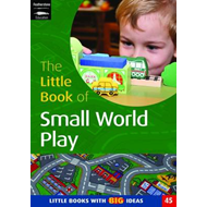 Little Book of Small World Play (BOK)