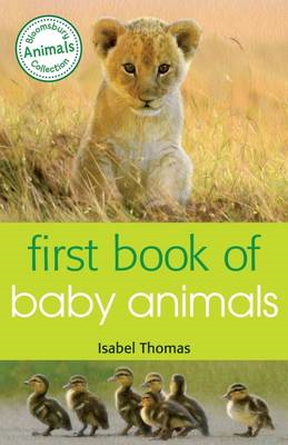 First Book of Baby Animals (BOK)
