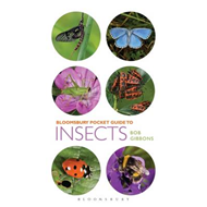Pocket Guide to Insects (BOK)