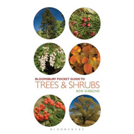 Pocket Guide to Trees and Shrubs (BOK)