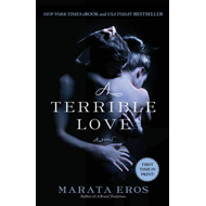 A Terrible Love (BOK)