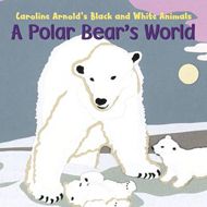 Polar Bear's World (BOK)