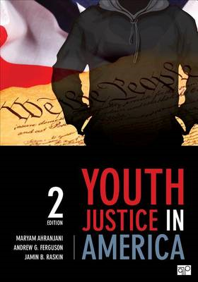 Youth Justice in America (BOK)