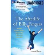 The Afterlife of Billy Fingers: How My Bad-Boy Brother Proved to Me There's Life After Death (BOK)