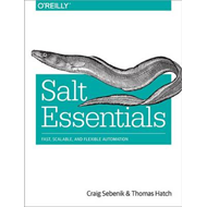 Salt Essentials (BOK)