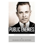 Public Enemies: Al Capone, John Dillinger, Bonnie & Clyde, and Baby Face Nelson (BOK)