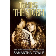 Taming the Storm (BOK)