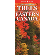 Quick Reference to Trees of Eastern Canada (BOK)