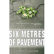 Six Metres of Pavement (BOK)
