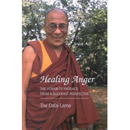 Healing Anger: Power of Patience from a Buddhist Perspective (BOK)