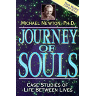 Journey of Souls (BOK)