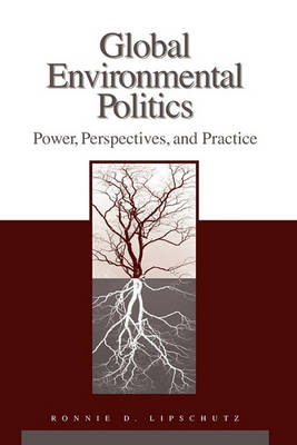 Global Environmental Politics: Power, Perspectives, and Practice (BOK)